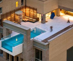 Joule Hotel Dallas pool