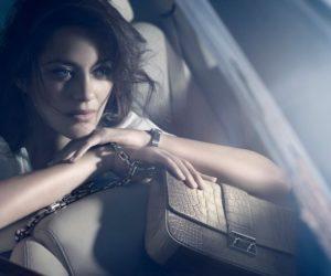 Miss Lady Dior Handbags 2011