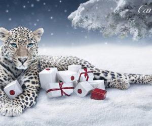 cartier winter tale campaign 2011