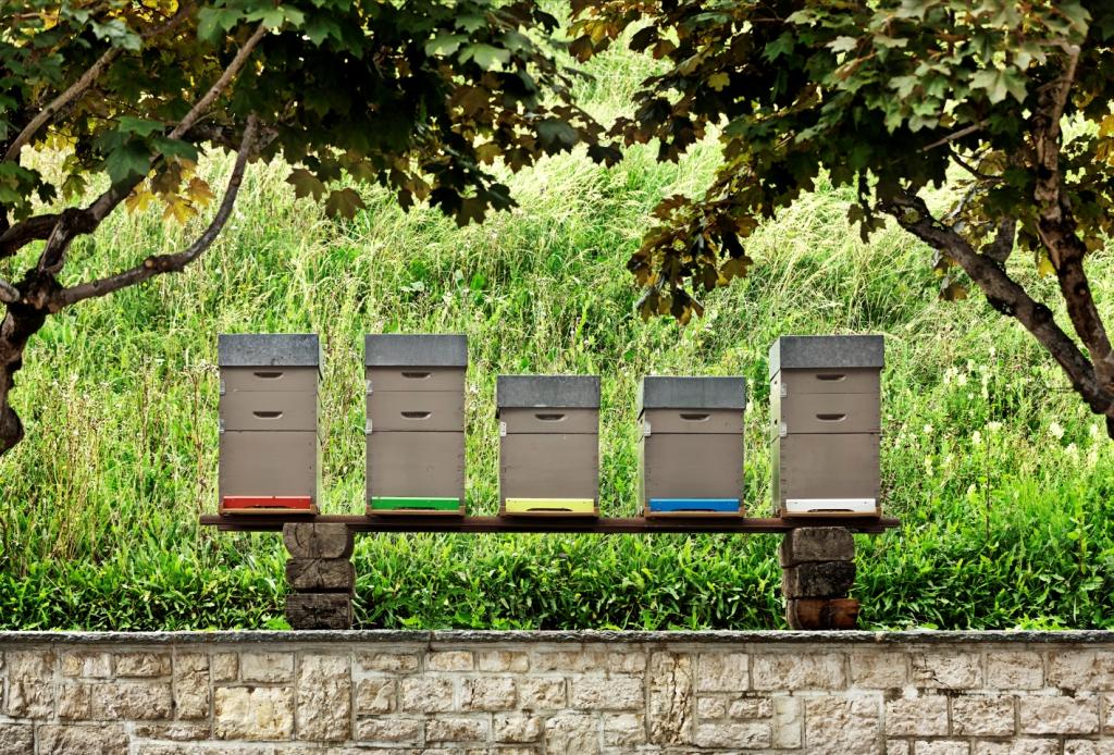 Jaeger LeCoultre hives