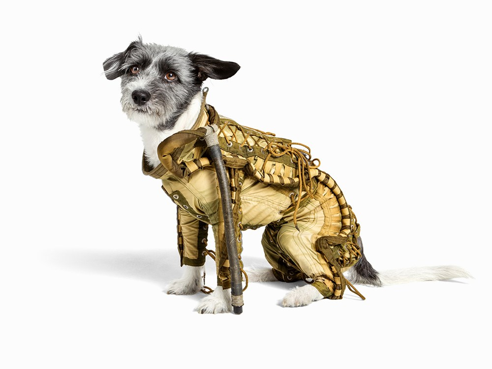 Soviet space suit for dog