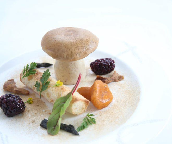 Foie gras and mushrooms