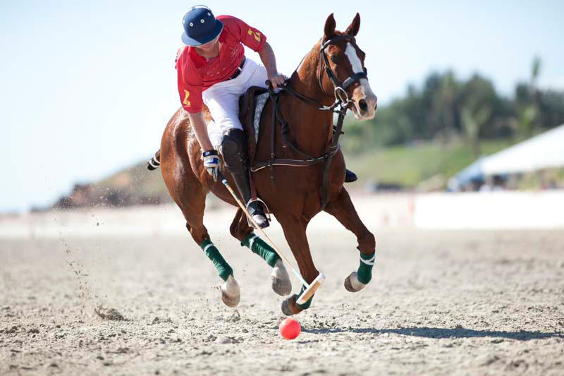 Image courtesy of Cable Beach Polo.