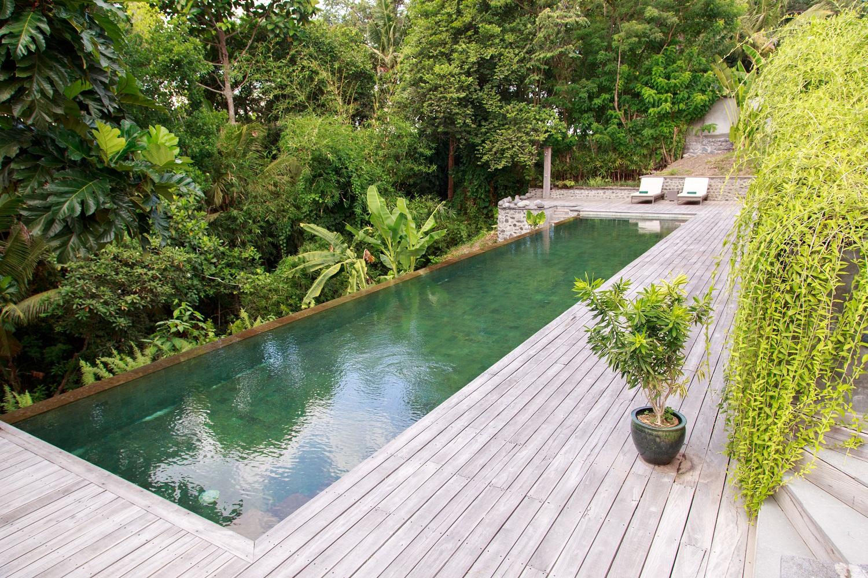 Maison Simba Bali