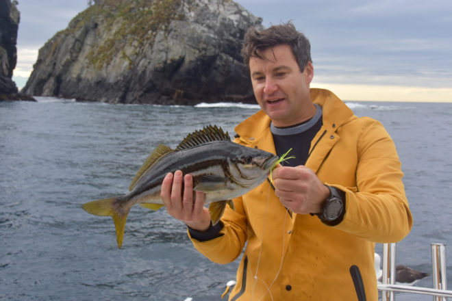 Clarke with the designated 'fish of the day', trumpeter, which took a while to find