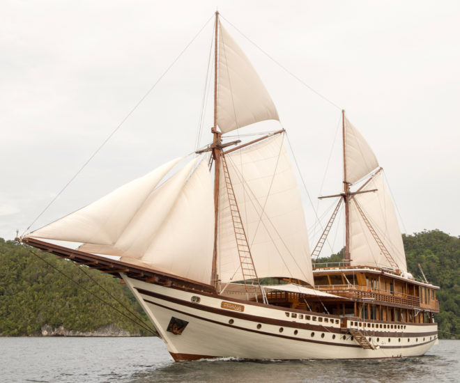 Prana by Atzaro has been a charter sensation since her launch in mid-2018